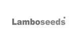 lamboseeds